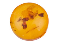 Natural-Amber,-Round-Cabochon-10mm