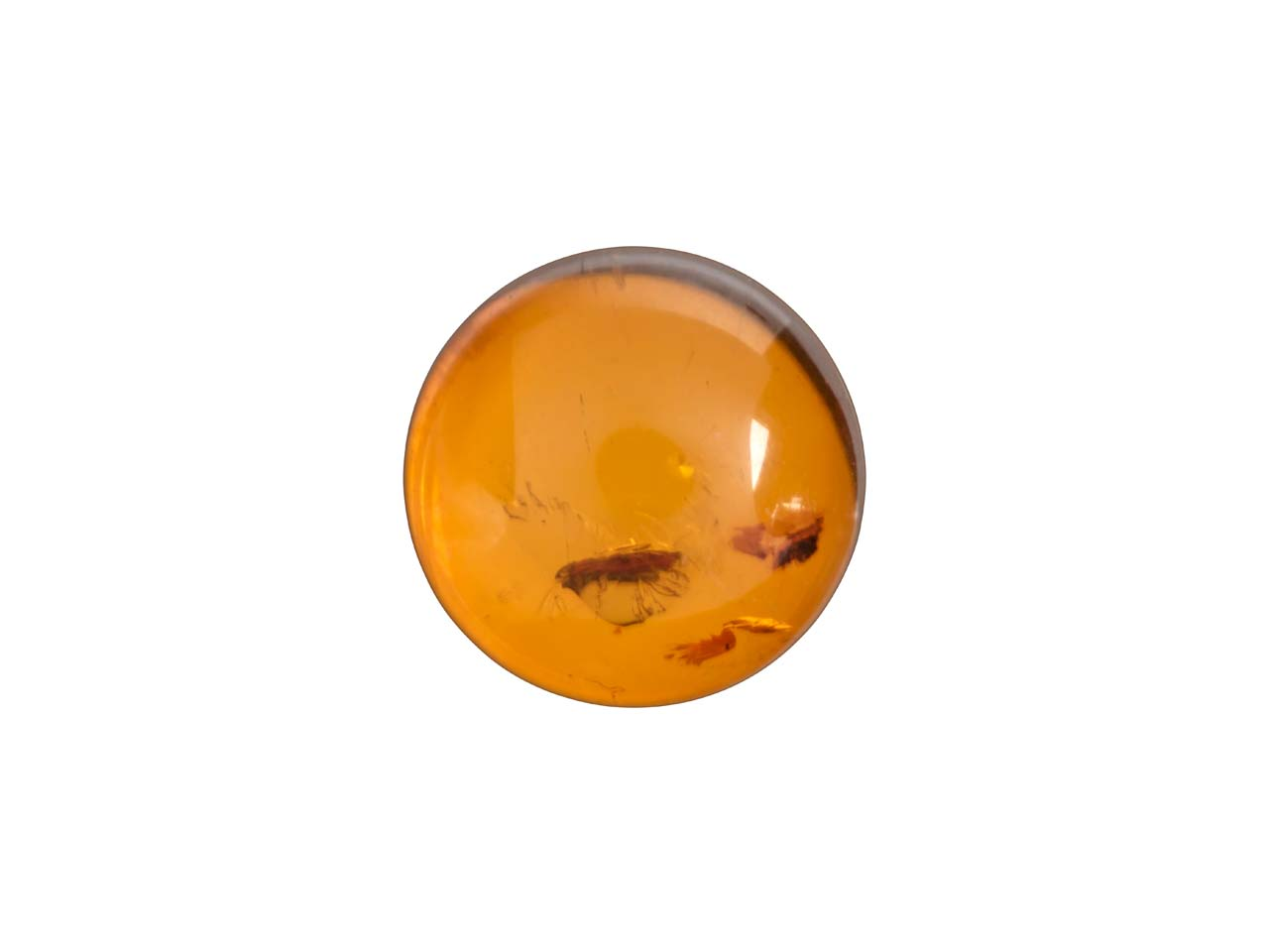 Natural Amber, Round Cabochon 8mm