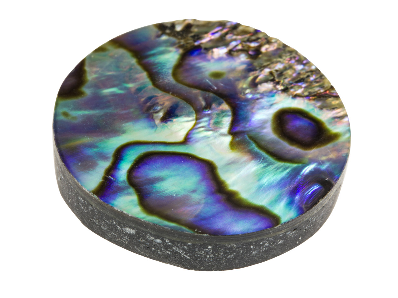 Paua Shell Doublet, Round, 25mm