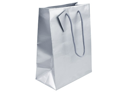 Silver Gloss Gift Bag Small       Pack of 5 170x120x75mm