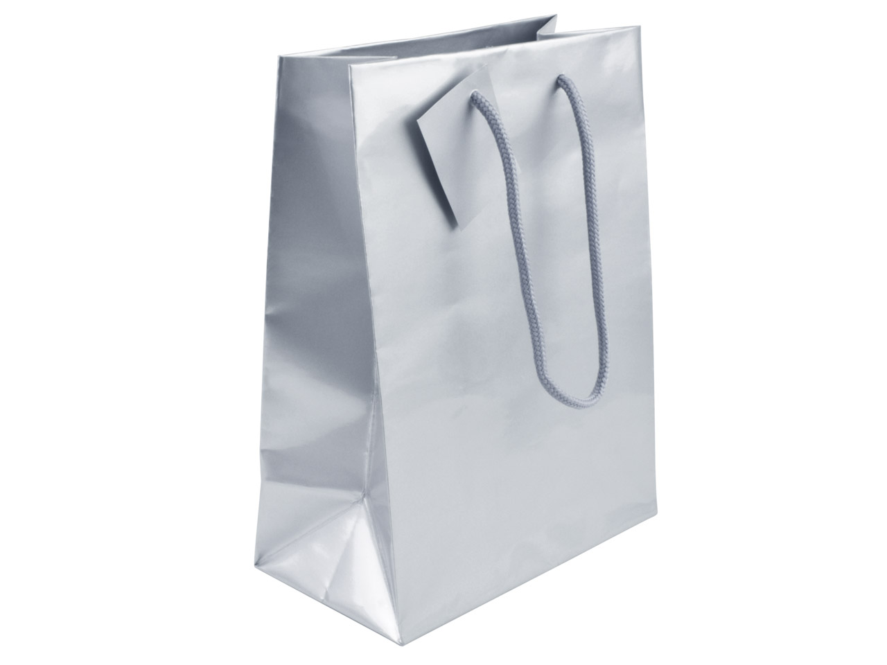 Silver Gloss Gift Bag, Small       Pack of 5 170x120x75mm