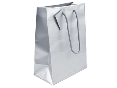Silver Gloss Gift Bag Medium      Pack of 5 215x160x90mm