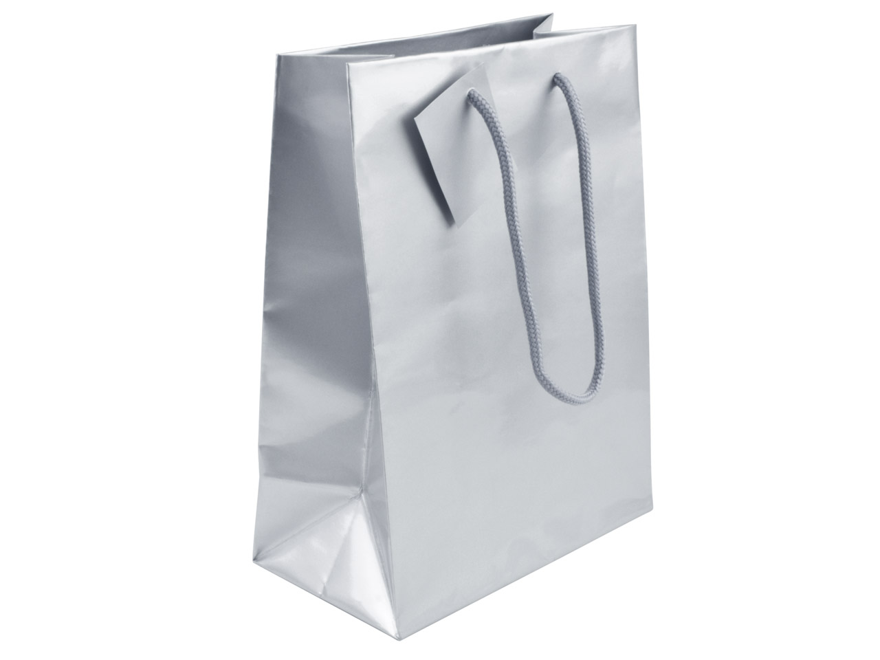Silver Gloss Gift Bag, Medium      Pack of 5 215x160x90mm