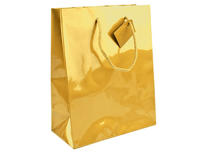 Gold Gloss Gift Bag Large         Pack of 5 255x205x100mm