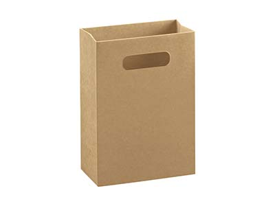Kraft Gift Bag Medium Pack of 10