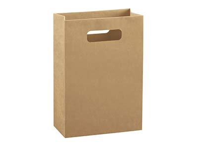 Kraft Gift Bag Large Pack of 10