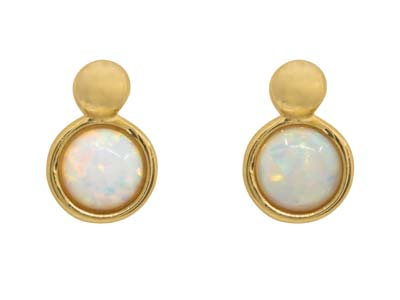 9ct Yellow Gold Opal Design Stud   Earrings