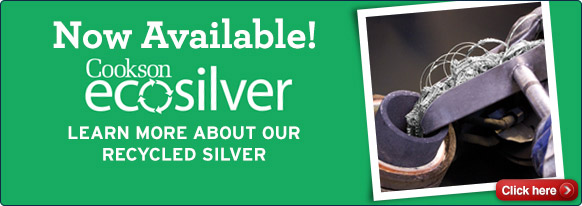 Now Available Ecosilver